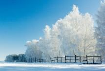 Natale in villaggio estone 17 e 18 dicembre 2016
