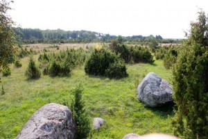 paesaggio di Saaremaa